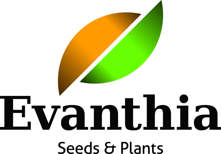 10-09 Evanthia logo Seeds & Plants